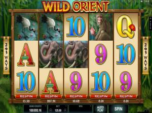 wildorient (2)